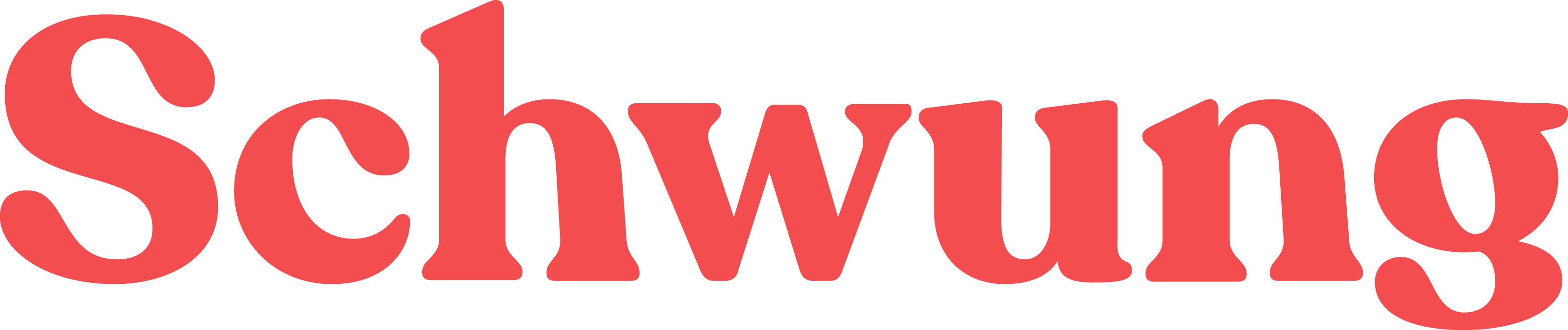 Schwung BV-logo